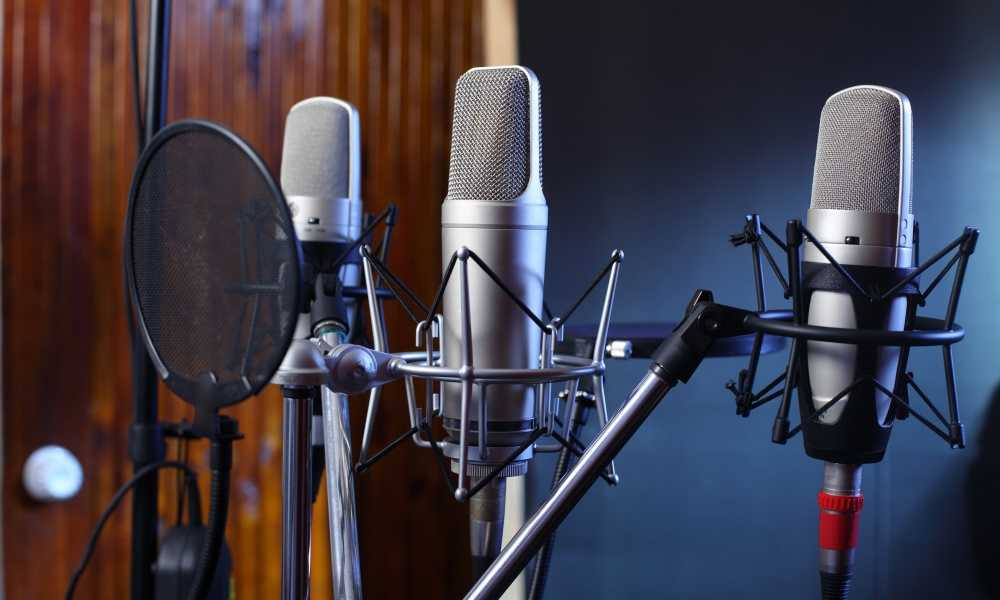 Best Studio Recording Microphone: Which One Should be Trending?